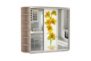 Фантазия 25 шкаф-купе  (с зеркалами и рисунком цветок)